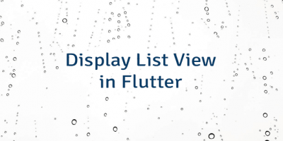 Display List View in Flutter