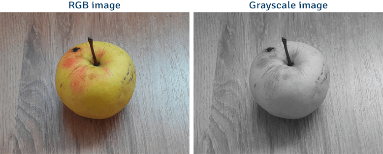 RGB image converted to grayscale image using OpenCV